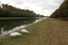 SCB-Fontainebleau-oct-2018-034