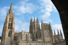 Burgos-239