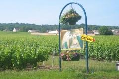 montagne-de-Reims-2010-006
